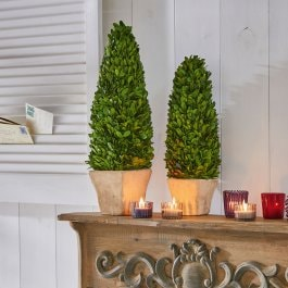 Lot de 2 arbres décoratifs Pierry vert/marron