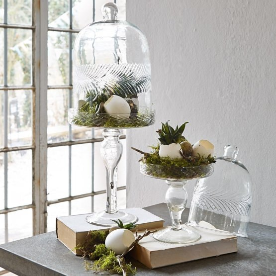 Cloche en verre Margueritte transparent